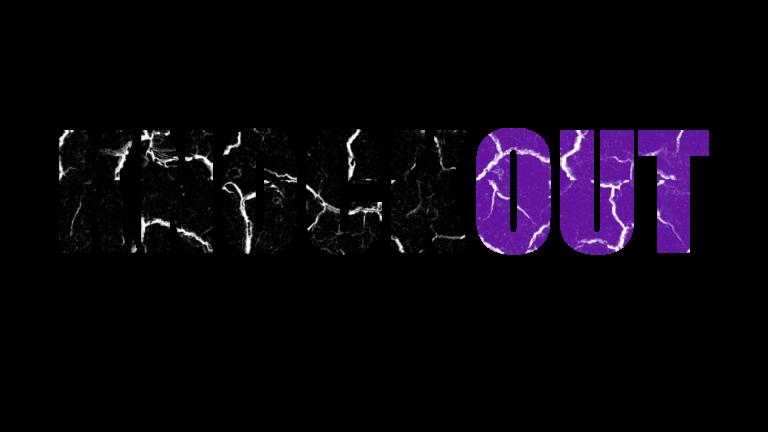 Knockout Magazin Logo auf transparentem Hintergrund